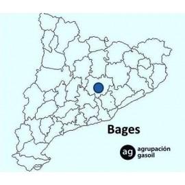 Mantenimiento Caldera Gasoil Bages
