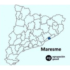 Mantenimiento Caldera Gasoil Maresme