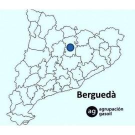 Mantenimiento Caldera Gasoil Berguedà