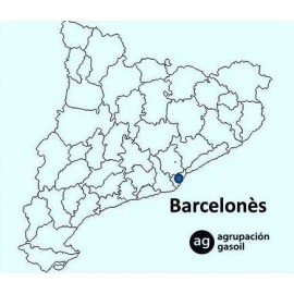 Mantenimiento Caldera Gasoil Barcelonès