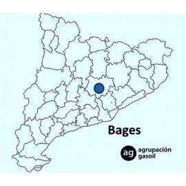 Reparación caldera gasoil  Bages