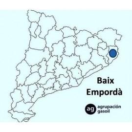 Reparación caldera gasoil  Baix Empordà