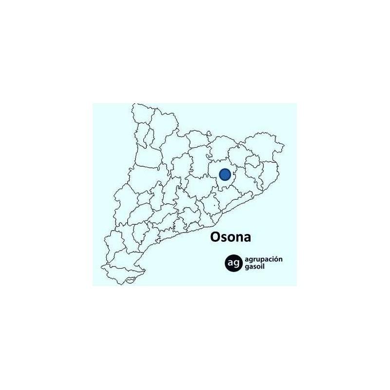 Manual de reparacion de calderas de gasoil linktopp for Reparacion calderas gasoil