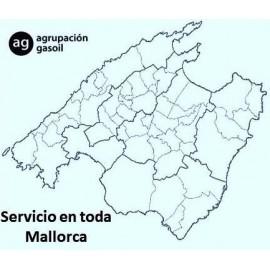 Reparación caldera gasoil Mallorca